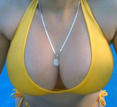 http://www.tittyblog.com/titties/big-boobs-in-swimsuit.jpg