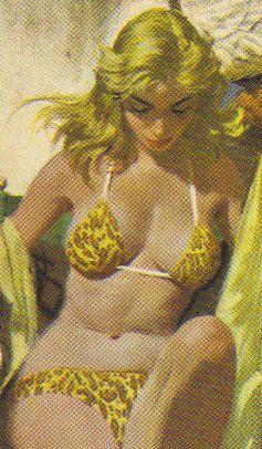 book cover boobies