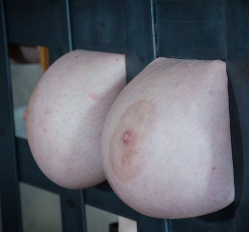 titties behind bars